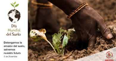 Día Mundial del Suelo - FAO Oliver Asselin