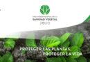 Sanidad Vegetal, proter las plantas es proteger la vida