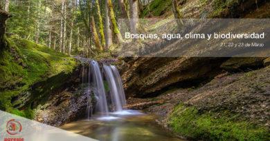 Bosques, agua, clima y biodiversidad