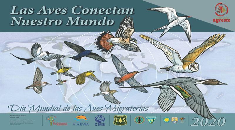 Día Mundial de las Aves Migratorias