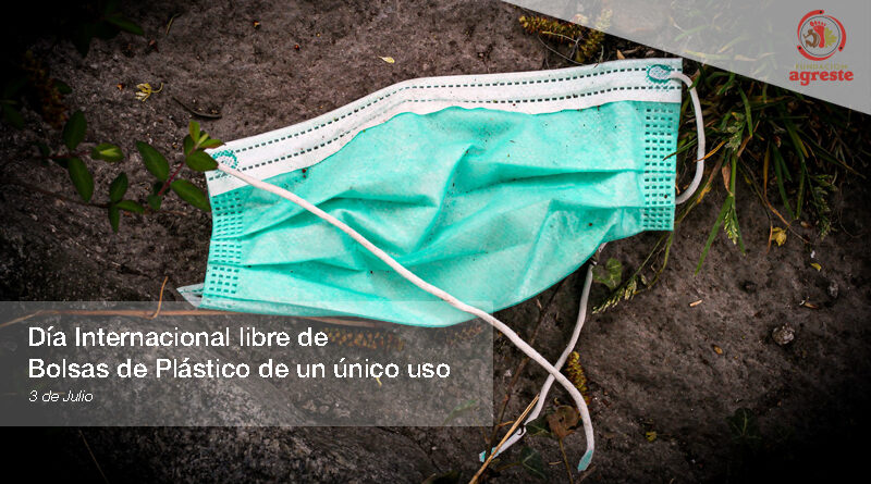libre de Bolsas de Plástico de un único uso